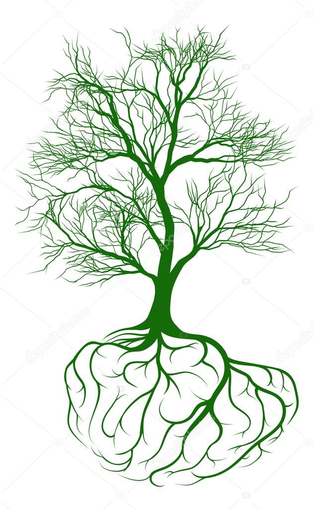depositphotos_101252164-stock-illustration-tree-with-brain-roots